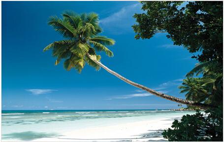 【海岛】菲律宾长滩岛4晚6日自由行